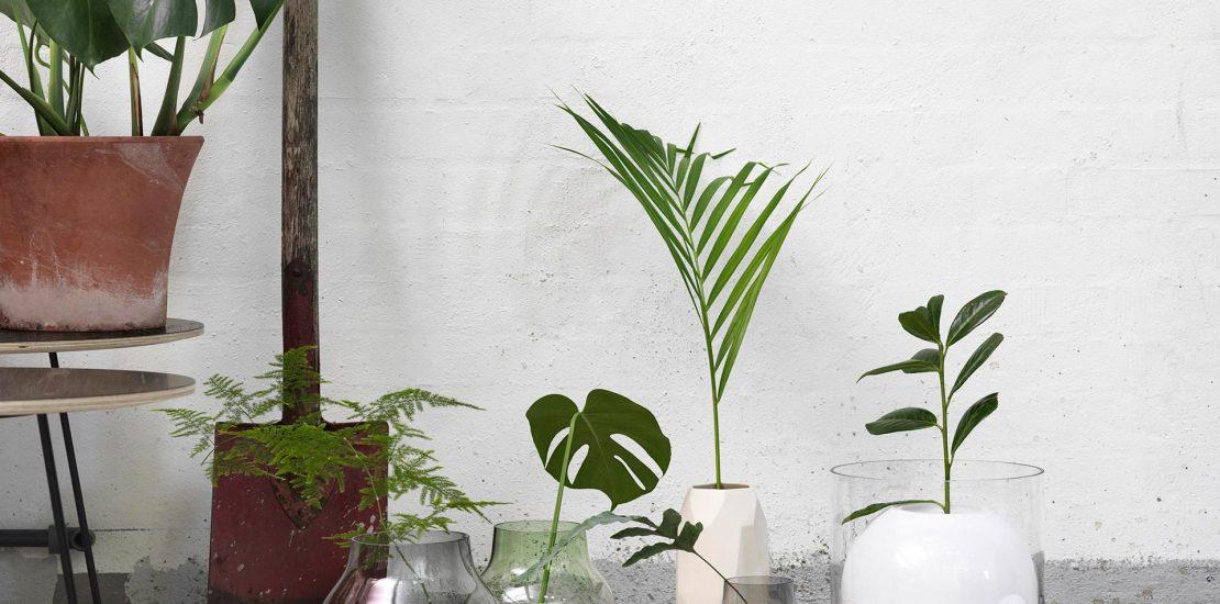 interieurinrichting-botanisch-wonen1