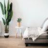 10 tips om van je huis een echte thuis te maken - Planten - Interieurkabinet
